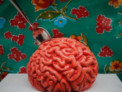 Brain Mold Demonstration